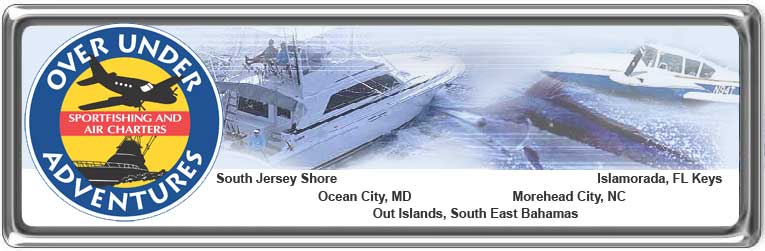 Cape May, Air charter service, cape may nj